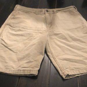 Blue mountain shorts